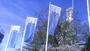 Flaggenmaste mit Fahnen NDR -Logo
